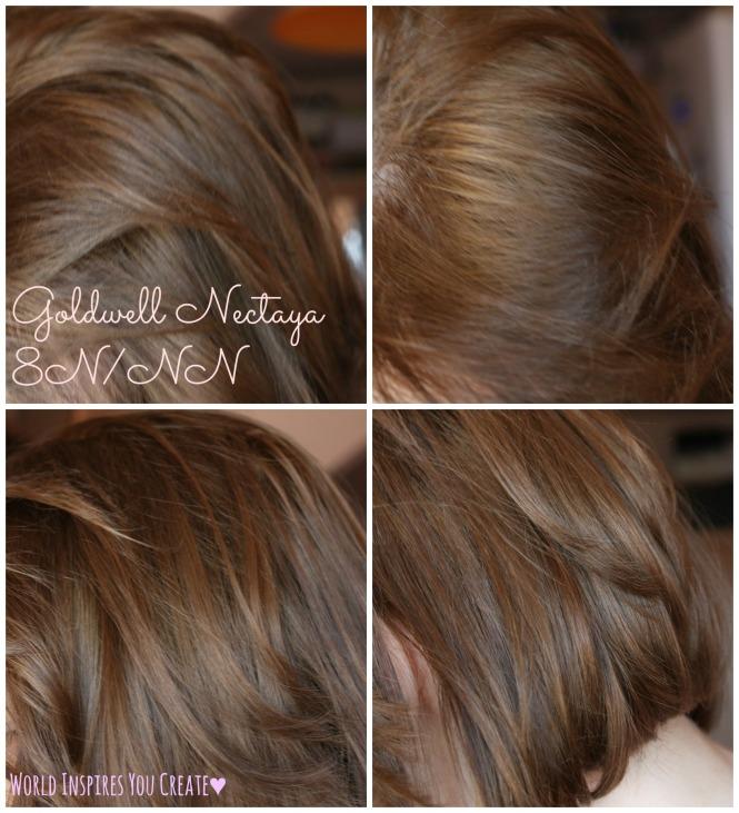 New Shade Goldwell Nectaya 8n Nn World Inspires You Create